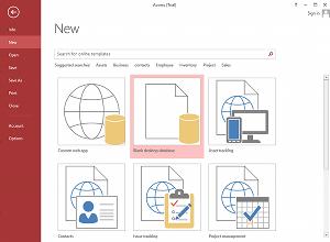 Screenshot of Microsoft Access 2013
