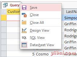 Screenshot of saving the query