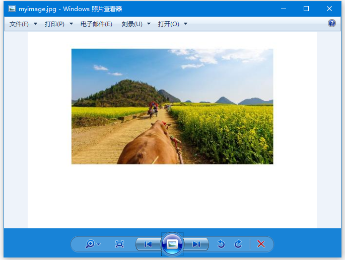 PDFBox提取圖像