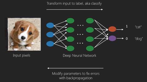 深度神經網絡